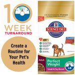 Achieve Your Pet's #PerfectWeight by Creating a Healthy Routine