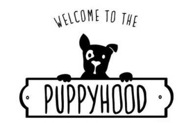 Navigate Puppyhood With Purina #MyPuppyHood