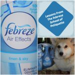 Lessons From The Febreze School of #Petiquette