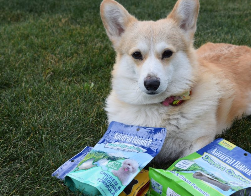 Natural Balance pet treats