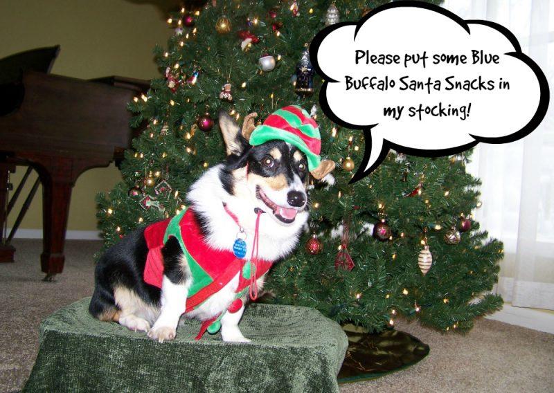 Ty Santa snacks
