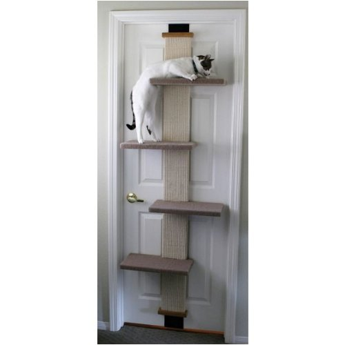 cat door tree