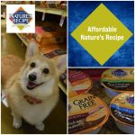 Choosing an Affordable Grain Free Pet Food #NaturesRecipe