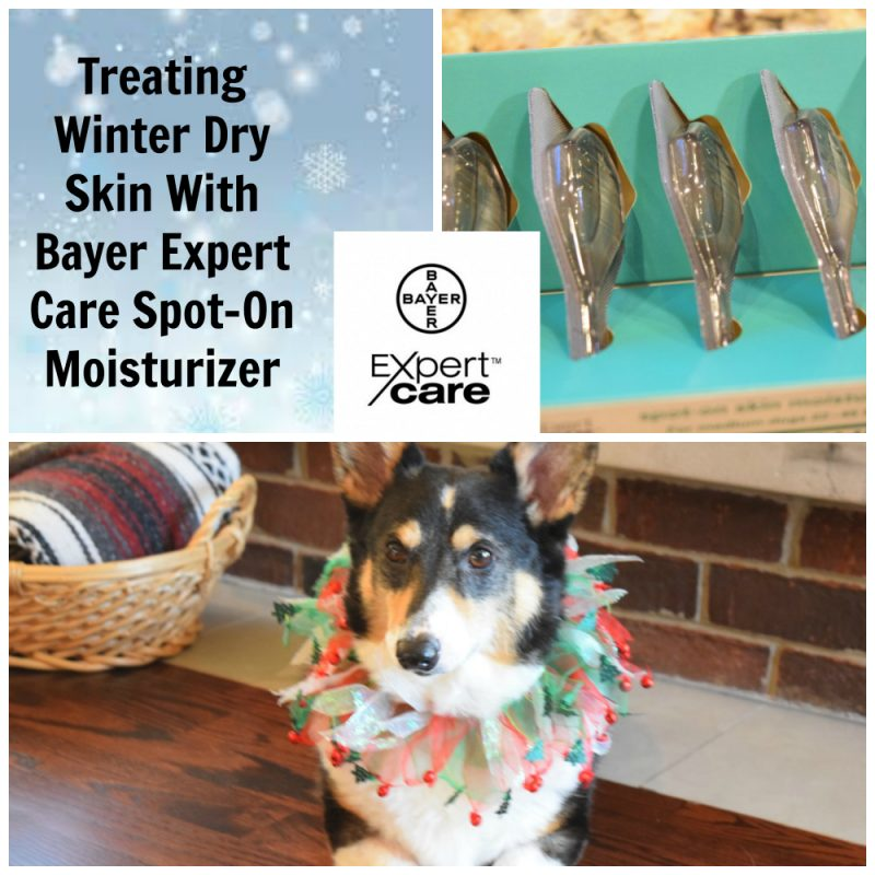 treating winter dry skin bayer expert care