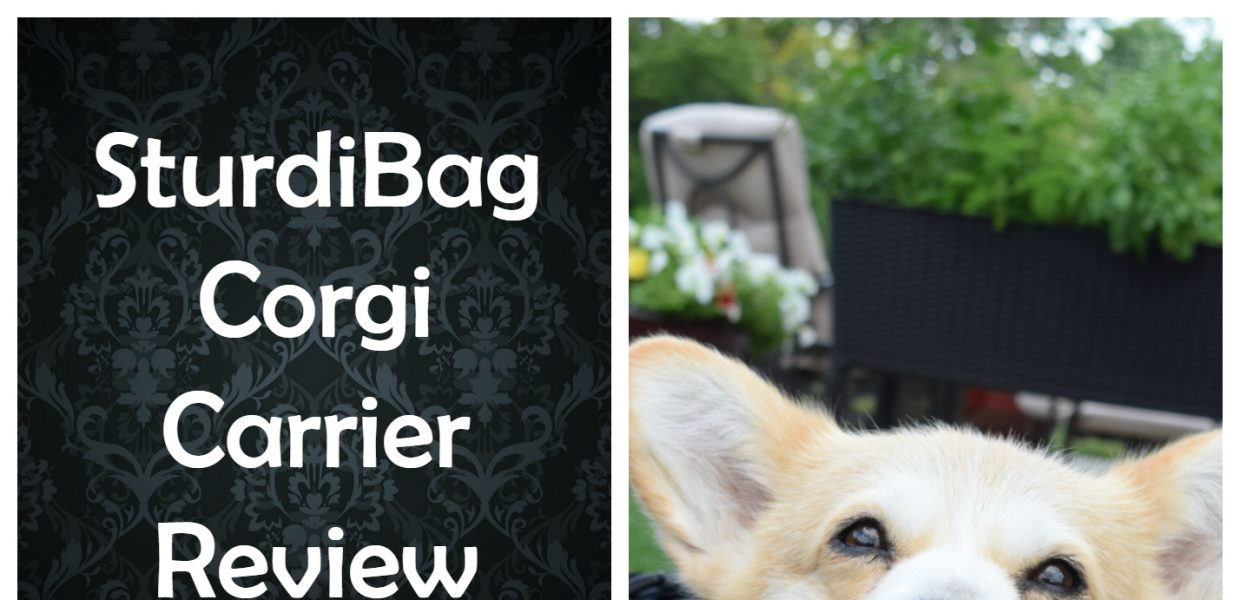 Corgi Sturdi bag Review