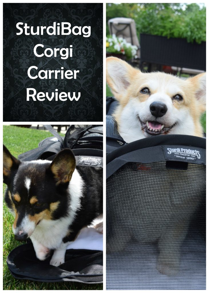 sturdibag corgi carrier review