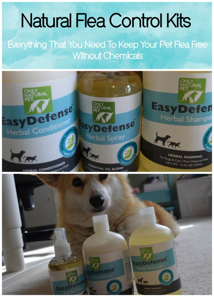 all-natural-flea-control-kits