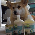 Year Round Natural Flea and Tick Control Solutions