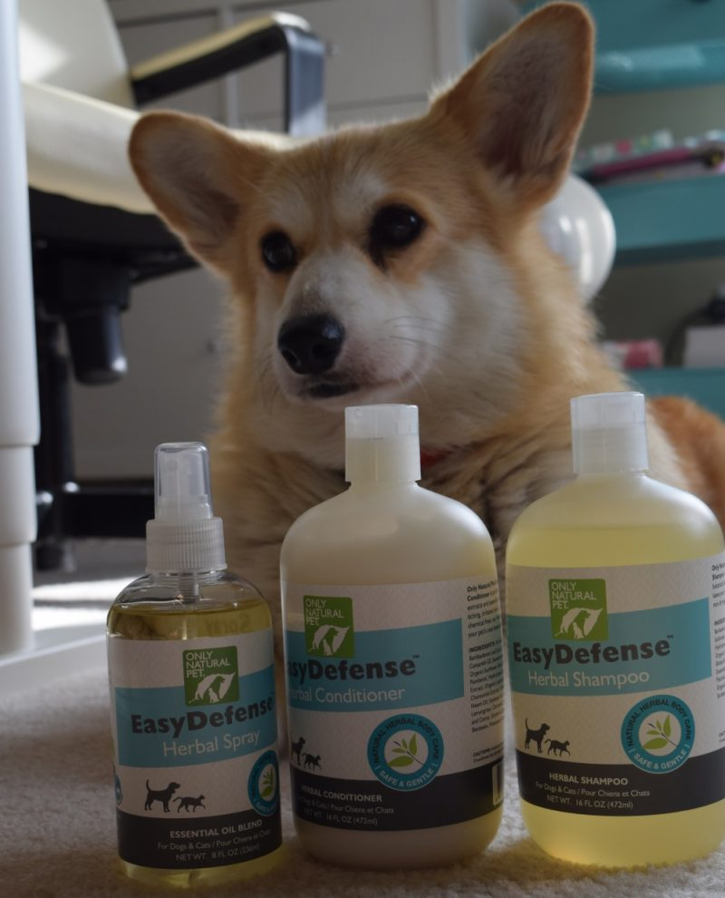corgi-eve-and-flea-products