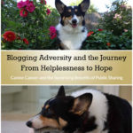 Blogging Adversity and the Journey from Helplessness to Hope