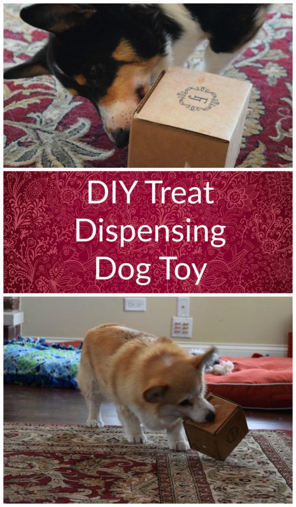 Blogger Challenge Diy Treat Dispensing Dog Toy Some Pets