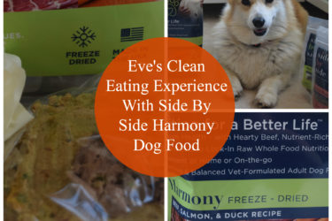 Eve's Clean Eating Experience With Side By Side Nutrition