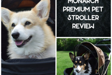 Ibiyaya Monarch Premium Pet Jogger, Pet Stroller Review