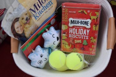 How To Celebrate With Your Pet Plus Give Back To Other Pets This Holiday